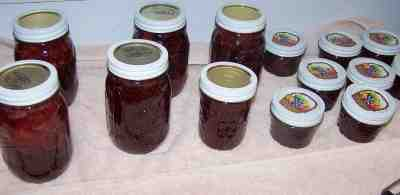 Image from pickyourown.org (see info on making jam below)