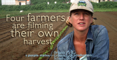 The Farmers Film