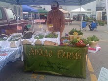 Farmers Market Picture - Alex Bryan