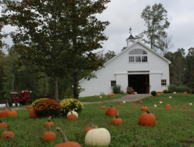 Barn With Pumkins Picture