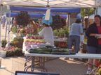 Farmers Market Picture