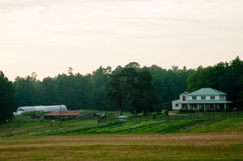 Beautiful Farm Picture Cedar Grove in Georgia