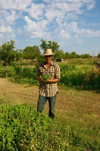 Cardo's Farm Project Texas Picture