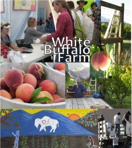 White Buffalo Organic Farm