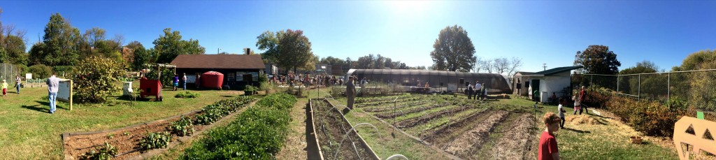 panaramic view of farm_harvest Festival