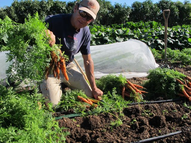 Pastured Poultry and Garden/CSA Manager Jobs in Colorado | Beginning ...