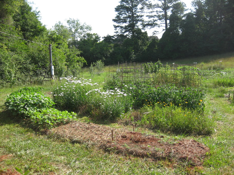 Biodynamic Farming Internships in Georgia Beginning Farmers