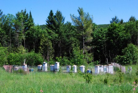 Honeybee Production on the Farm