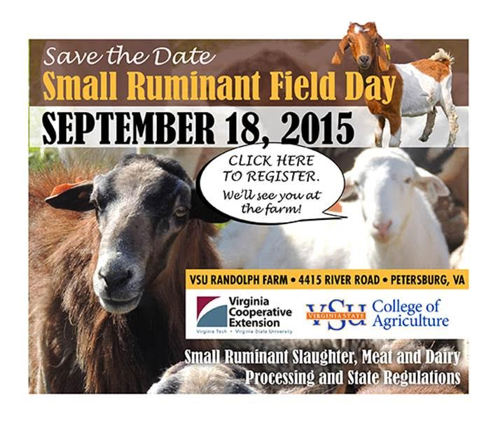 Small Ruminant Field Day