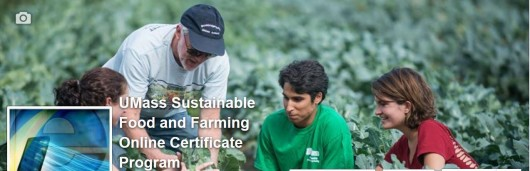 Sustainable Food and Farming