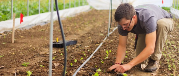 Start Your Own Farm Business