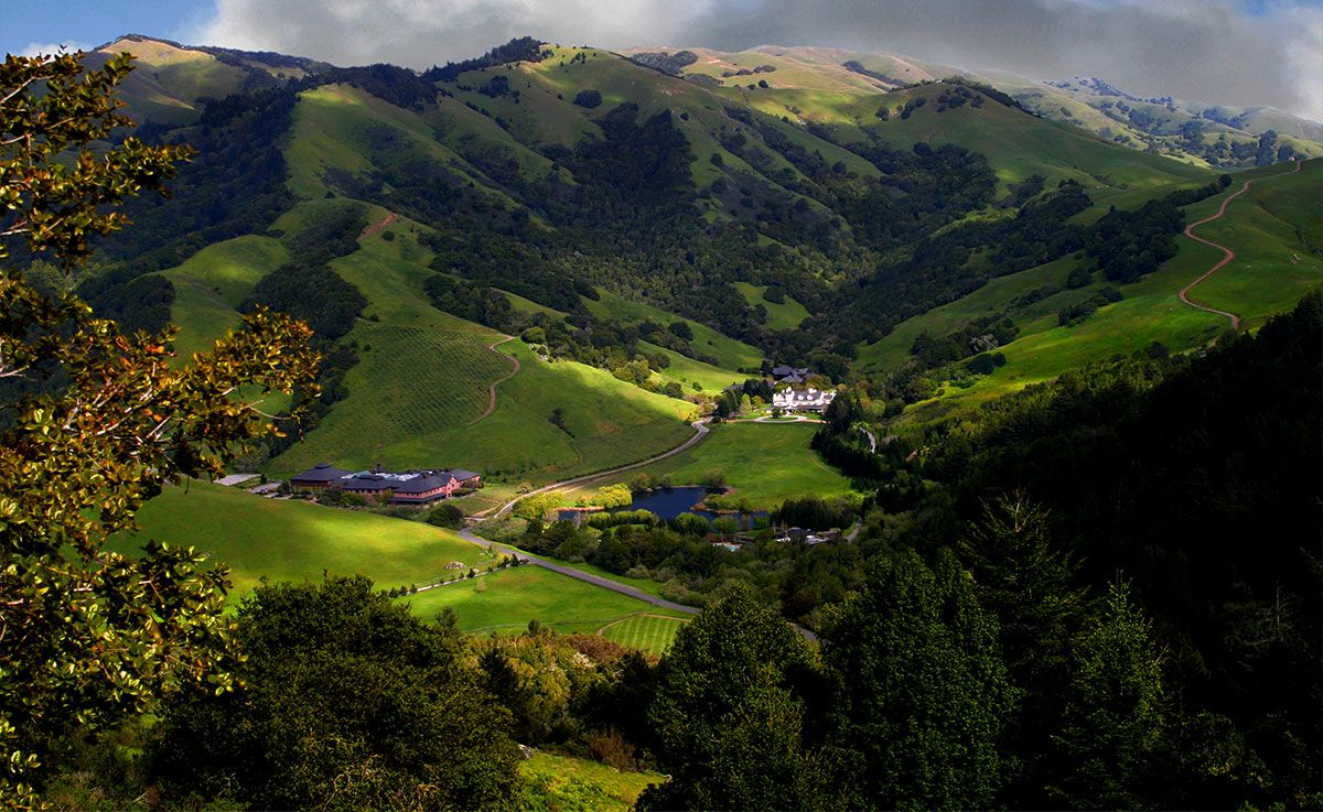 Animal Care Job At Skywalker Ranch In California
