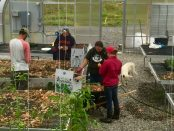 Sustainable Farming and Food Systems Program