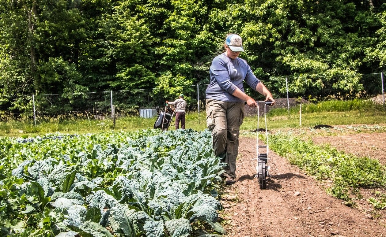 Sustainable Agriculture Apprenticeship In Michigan