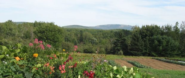 Bar Harbor Community Farm
