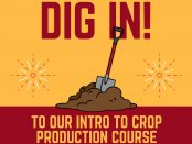 sustainable crop production for beginners