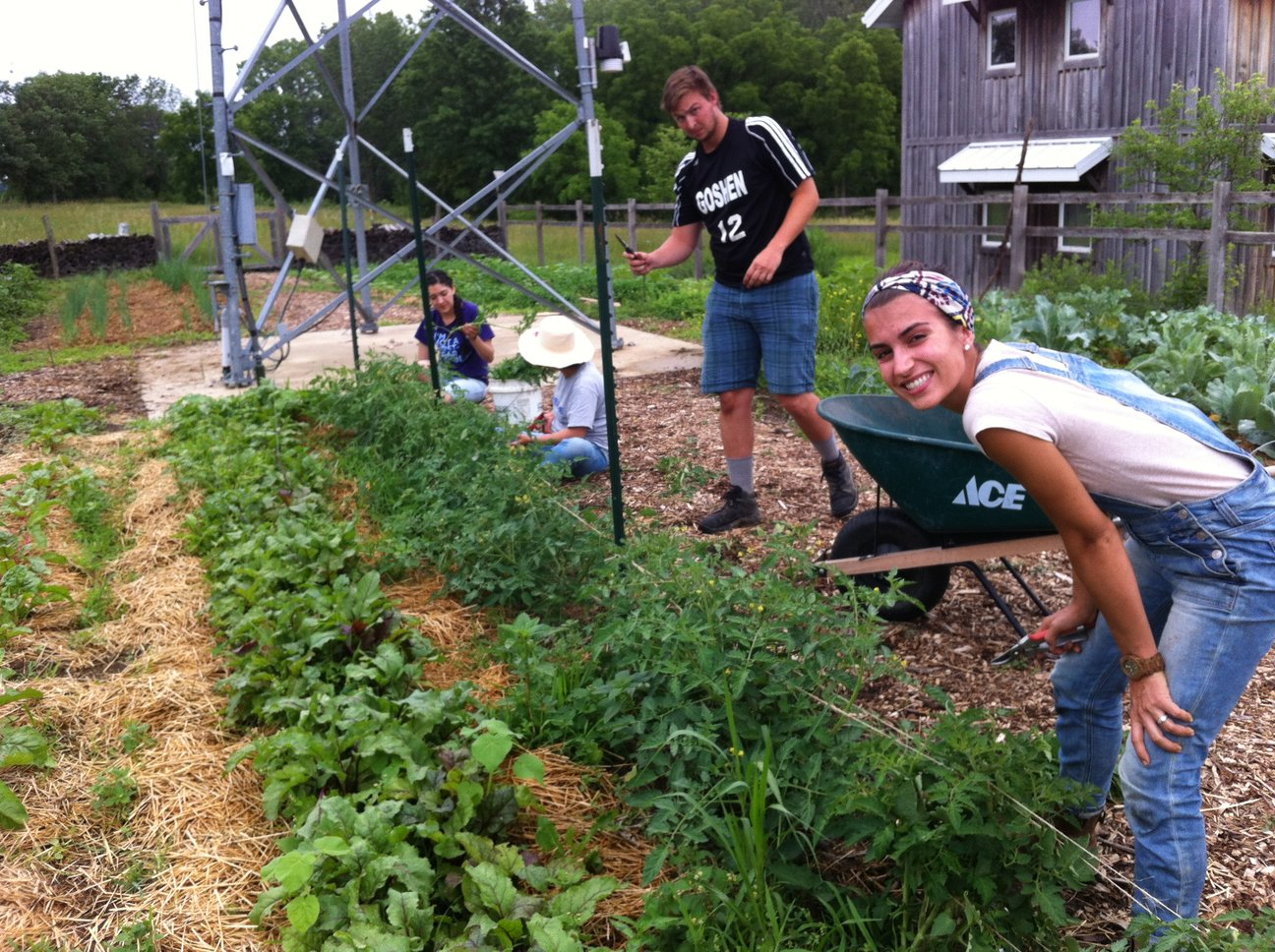 sustainable farm and food program