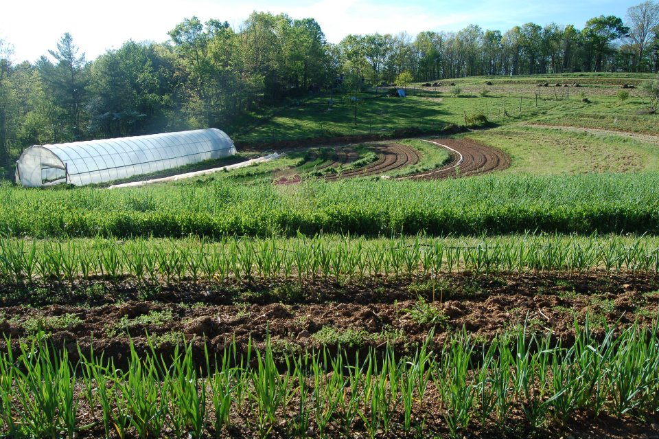funding opportunities in sustainable agriculture