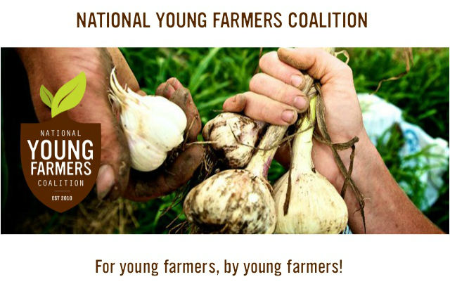 young farmers survey
