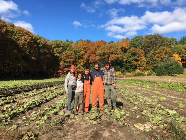 farms apprenticeships