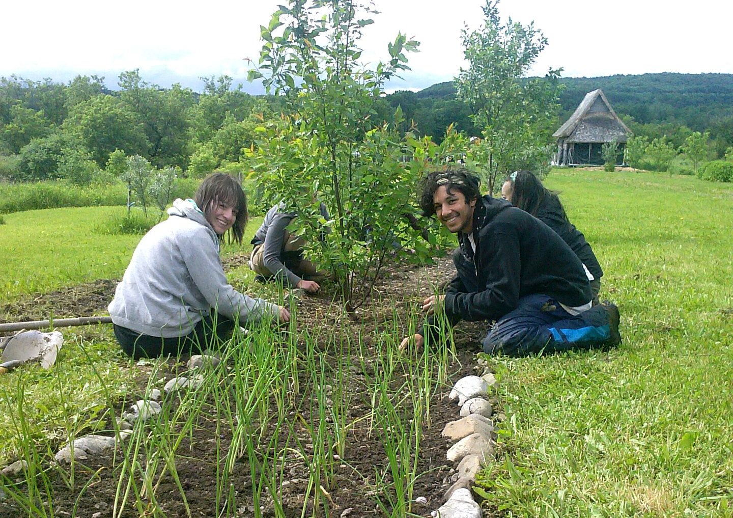 Permaculture Internship in New York