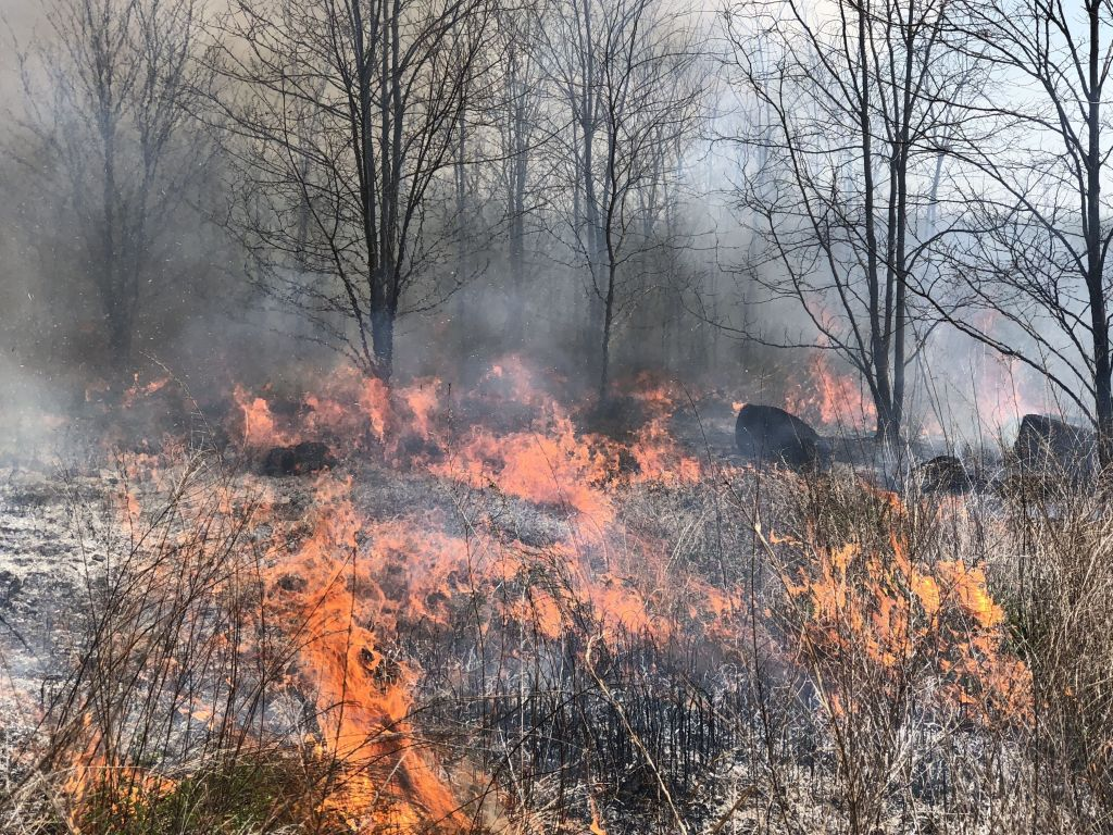 controlled burns on the farm