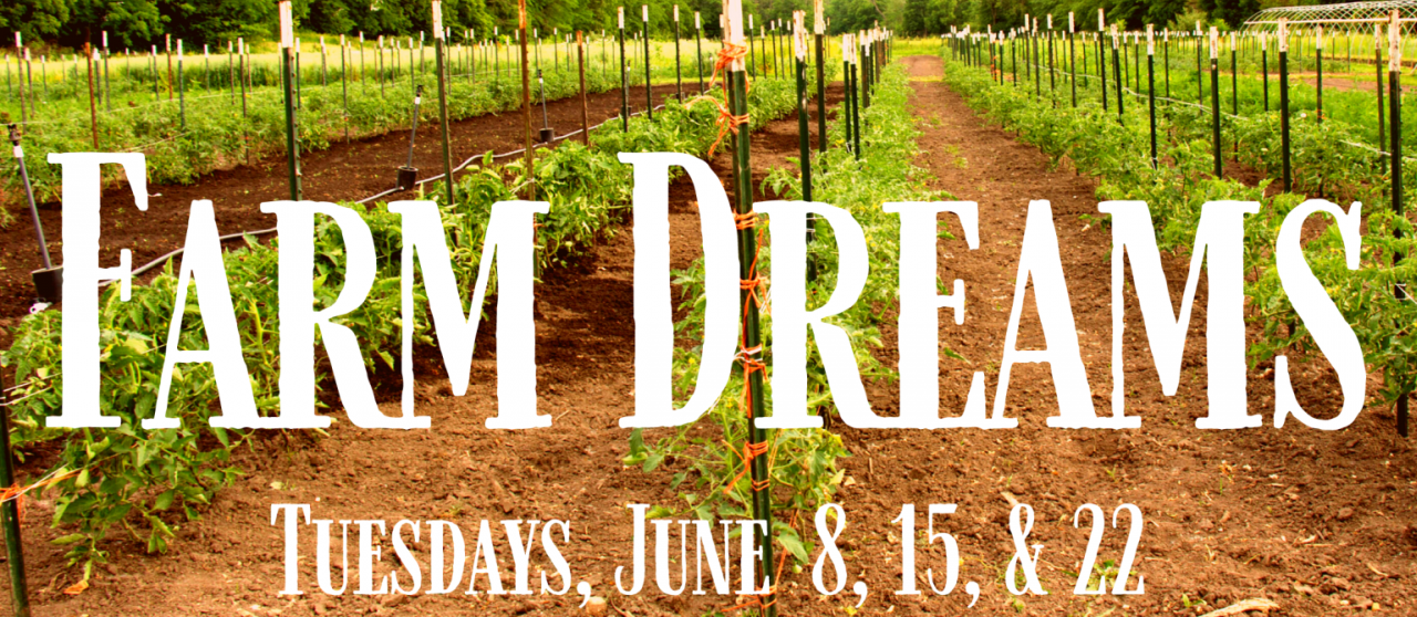 farm dreams workshop
